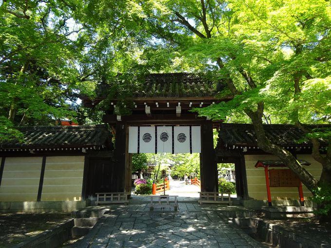 今宮神社は健康長寿と玉の輿にご利益があると信仰される神社