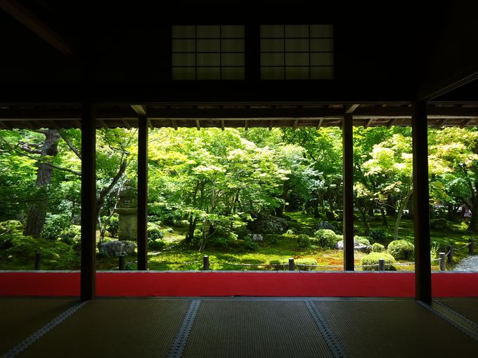 額縁庭園「十牛之庭」は紅葉の名所であり人気の写真スポット
