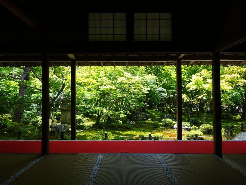 まるで名作絵画!京都「圓光寺」で美しすぎる額縁庭園を満喫しよう
