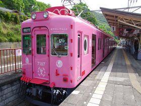 こりゃめでたい!「めでたいでんしゃ」でゆく和歌山市・加太めぐり|和歌山県|トラベルjp<たびねす>