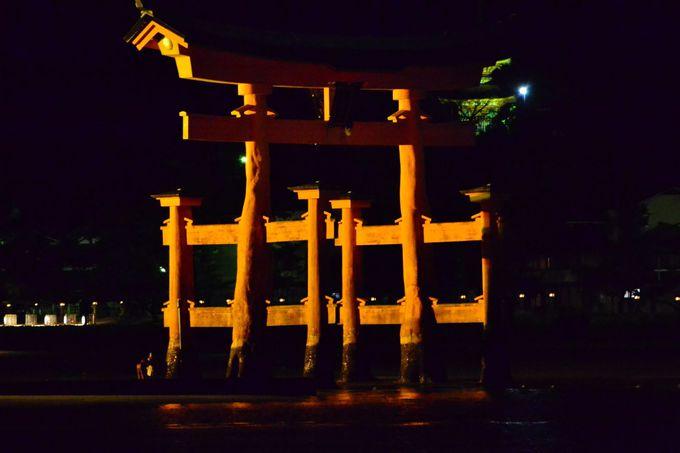 宮島のナイトクルーズと厳島神社のライトアップに行ってみよう!