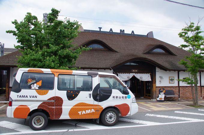 貴志駅でニタマ駅長とご対面