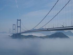 まるで天空の橋!霧に浮かぶ愛媛「来島海峡大橋」がスゴイ|愛媛県|トラベルjp<たびねす>