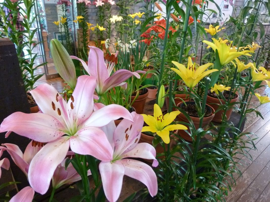 メインフラワーは「ゆりの花」