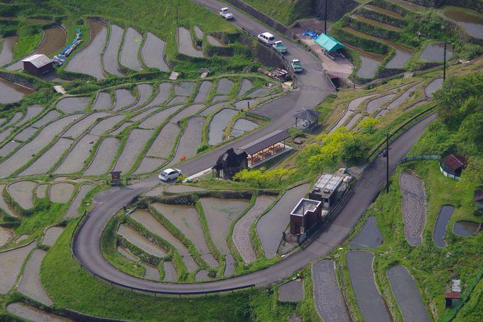 丸山千枚田展望台からの絶景を楽しもう