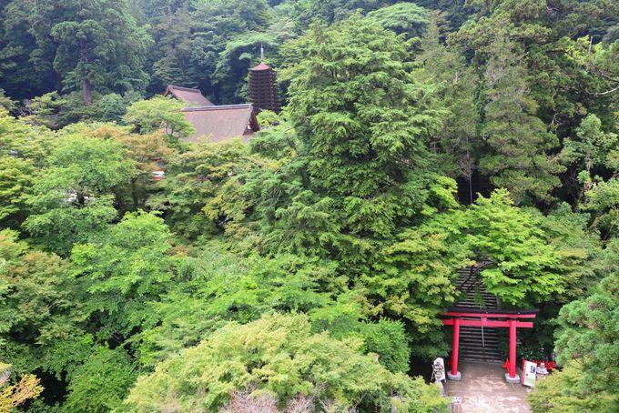 多武峰観光ホテルからの眺めも見逃せない