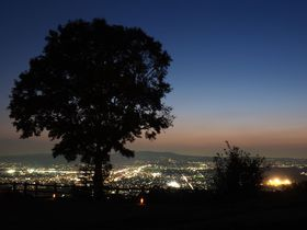 新日本三大夜景「奈良・若草山」で宝石を散りばめたような夜景を満喫しよう!