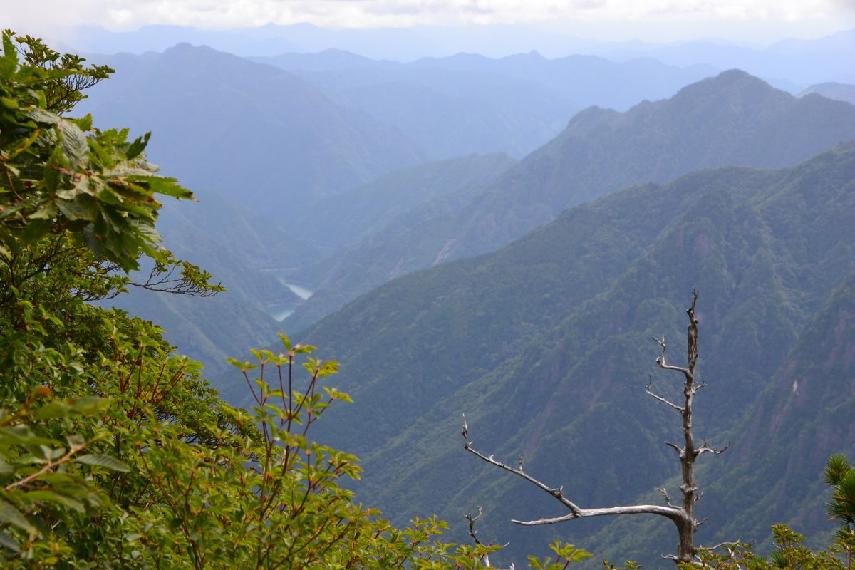 牛石ケ原の光景