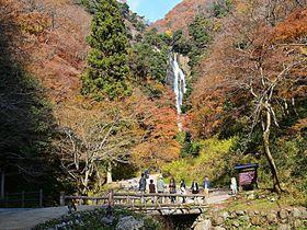 野生のニホンザルに会えるかも?岡山「神庭の滝自然公園」で紅葉を満喫!|岡山県|トラベルjp<たびねす>