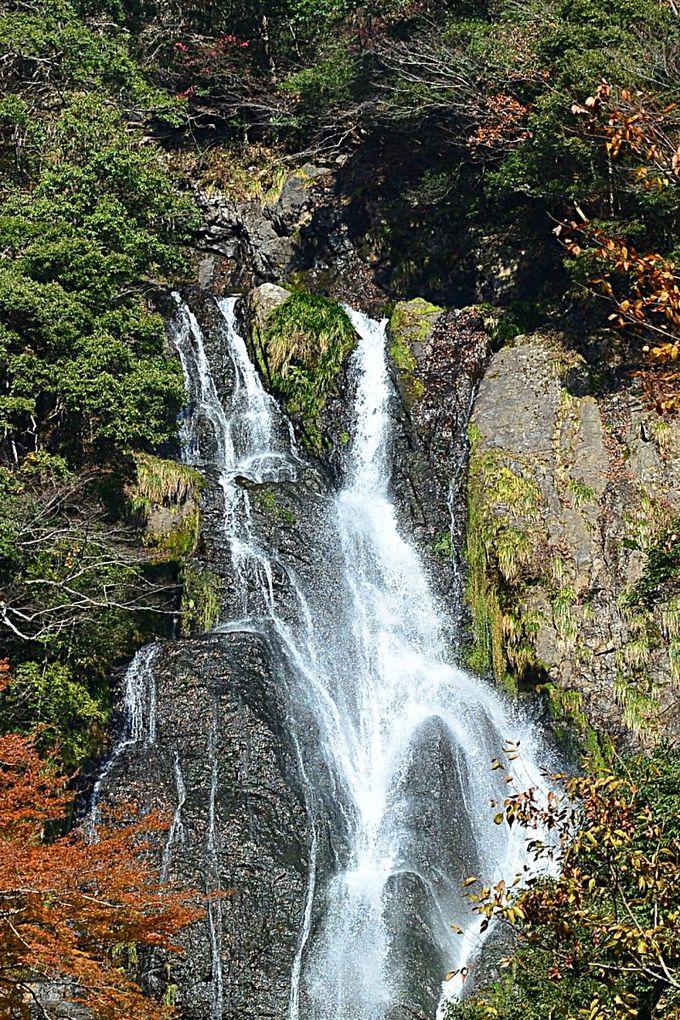 滝の近くは水量の多いときには水しぶきも