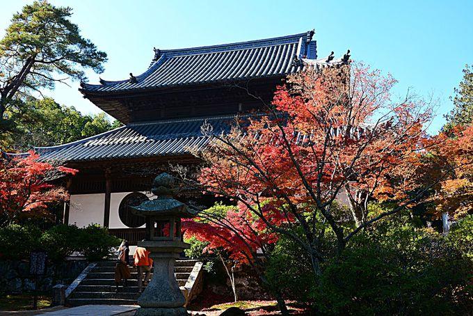 涙でネズミの絵を描いた「雪舟」ゆかりの岡山「井山宝福寺」で紅葉を楽しもう!