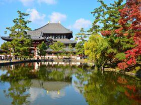 いにしえの都が荘厳に輝く秋・奈良公園で紅葉を満喫しよう!