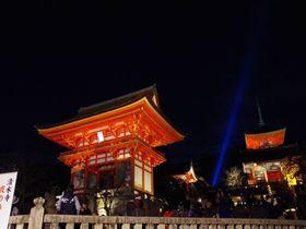 古都の早春の風物詩「京都・東山花灯路」で夜の散策を楽しもう!
