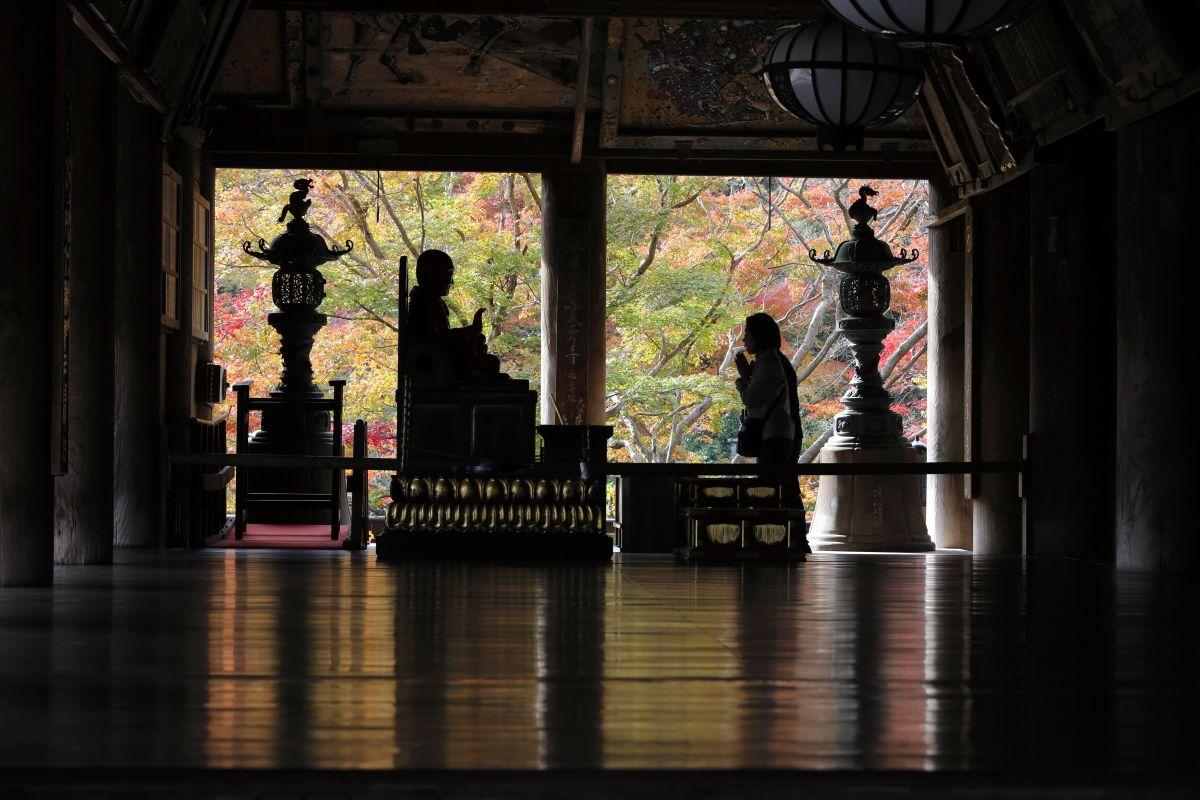 奈良・花の御寺「長谷寺」もみじまつりで大和路の秋を満喫!
