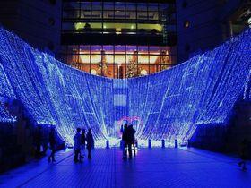 冬の横浜イルミネーション散歩!夜景を120%楽しむならこのルート