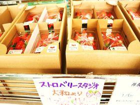 美味&レアな横浜・神奈川みやげも揃う!日本大通り「かながわ屋」