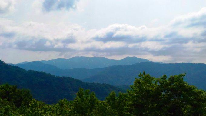 こんなところにビュースポットが!白神山地の山々を一望