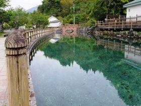 暑い日は鹿児島の名水「丸池湧水」で涼を味わう!