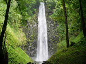 山形県で一番高い滝「玉簾の滝」!滝パワー&森パワー浴び放題のパワースポット|山形県|トラベルjp<たびねす>
