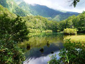 上から!間近で!東北の霊峰・鳥海山の麓にある神秘の池「鶴間池」|山形県|トラベルjp<たびねす>