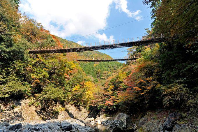 珍しい親子吊橋「樅木の吊橋」
