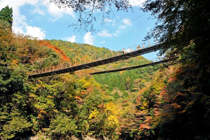 吊り下げられていない吊橋「樅木の吊橋」