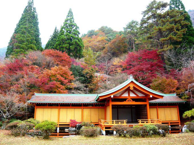 紅葉と山の幸と歴史!熊本の秘境・五家荘「平家の里」