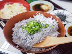 季節限定!衝撃価格!瀬戸内・大塩水産の「生シラス丼」はのっけ盛り放題