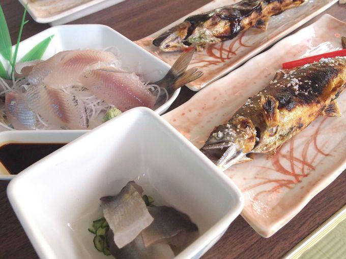 刺身に、魚田…アユづくしのコースをご堪能あれ!