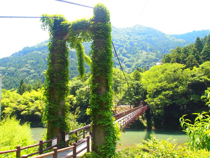 帰りには近くの「恋のつり橋」見学も!