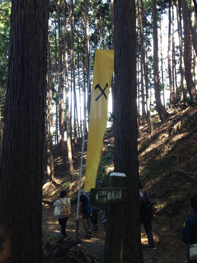 小早川秀秋の幟を目印に山頂へ向かおう!