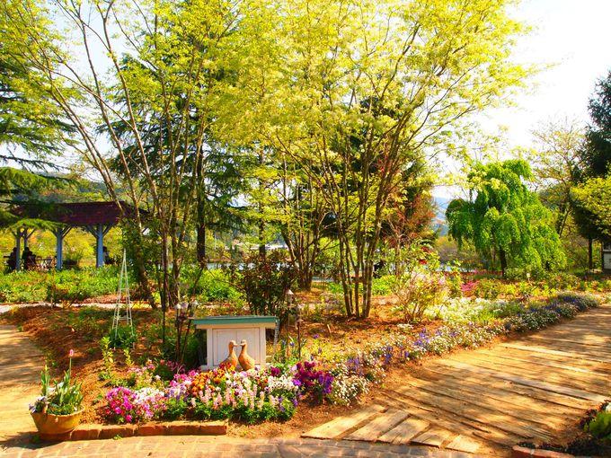 ガーデニング好きにはたまらない!13,000平方メートルの壮大な庭!