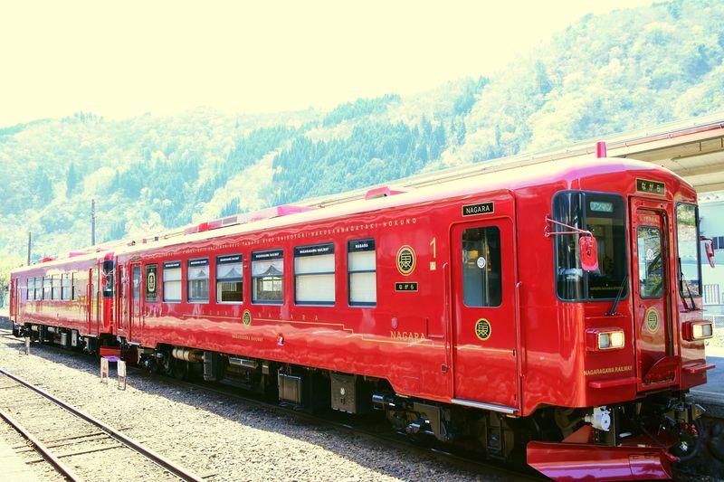水戸岡鋭治デザイン!岐阜・長良川鉄道の新観光列車「ながら」が素敵すぎる