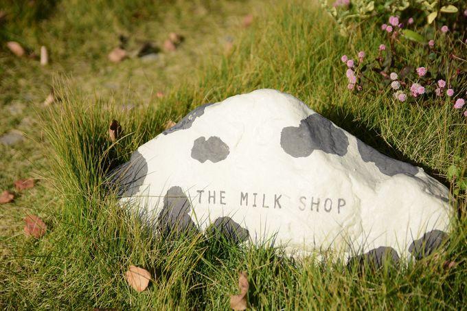 創業120年以上の「棚橋牛乳」から生まれた「THE MILK SHOP」