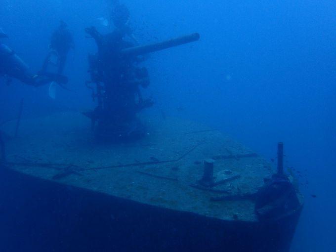 タオ島に来たら、ぜひダイビングを!