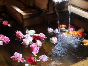 美人の湯×バラ風呂を堪能!道後温泉女子旅なら「道後山の手ホテル」へ