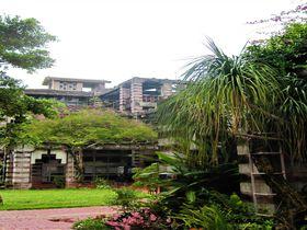 沖縄に古代遺跡?!市役所とは思えない名護市庁舎がすごい。|沖縄県|トラベルjp<たびねす>
