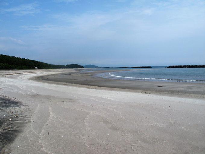 3キロもの白砂青松が広がる照島海岸