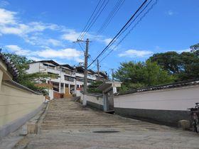 ここ、ほんまに大阪?小説の舞台を歩く「天王寺七坂」