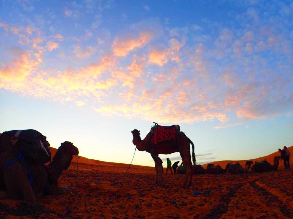 3.サハラ砂漠/モロッコ
