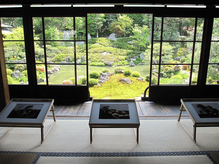 写真と寺院がコラボ「KYOTOGRAPHIE京都国際写真祭2017」