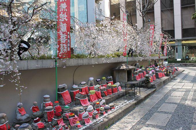 京都の中心街に建つ聖徳太子創建の寺
