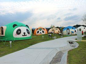 パンダの村に泊まろう!和歌山 白浜「パンダヴィレッジ」|和歌山県|トラベルjp<たびねす>