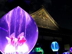 世界遺産でみる芸術「アートアクアリウム城-京都・金魚の舞-」