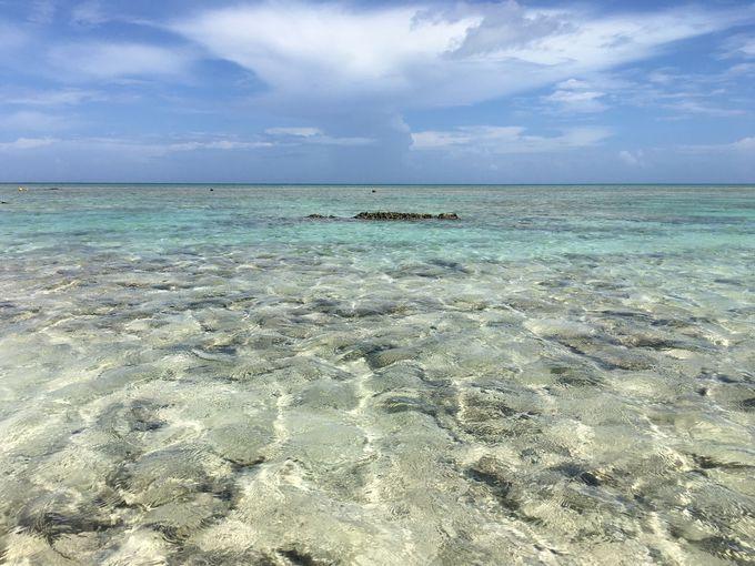 島から島へ行っちゃう?!天国のような「はての浜」