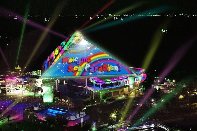 夜空をバックにカラフルに弾ける光と映像ショー「スカイ ライト マジック 〜irodori〜」