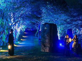 淡路島にアニメパーク「ニジゲンノモリ」がオープン|兵庫県|トラベルjp<たびねす>