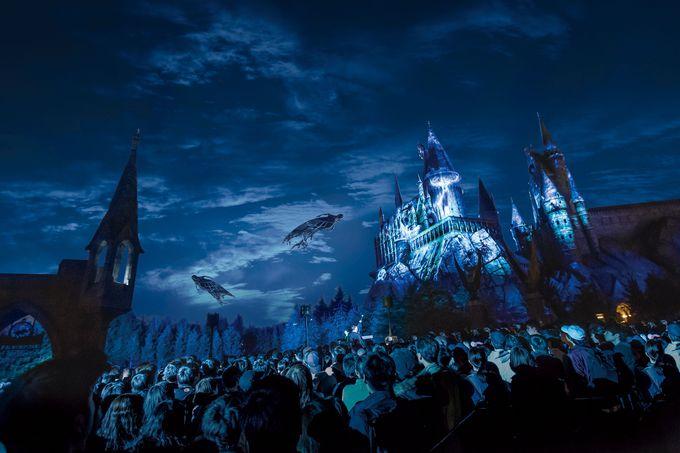 夜は村全体が魔法にかけられる!