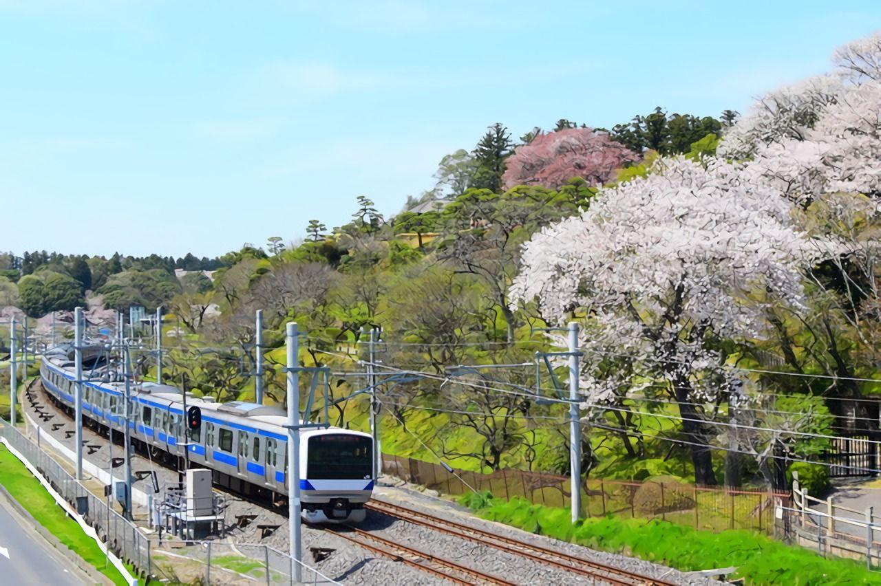 春の風物詩「梅」の香りを運んでくれる「偕楽園臨時駅」