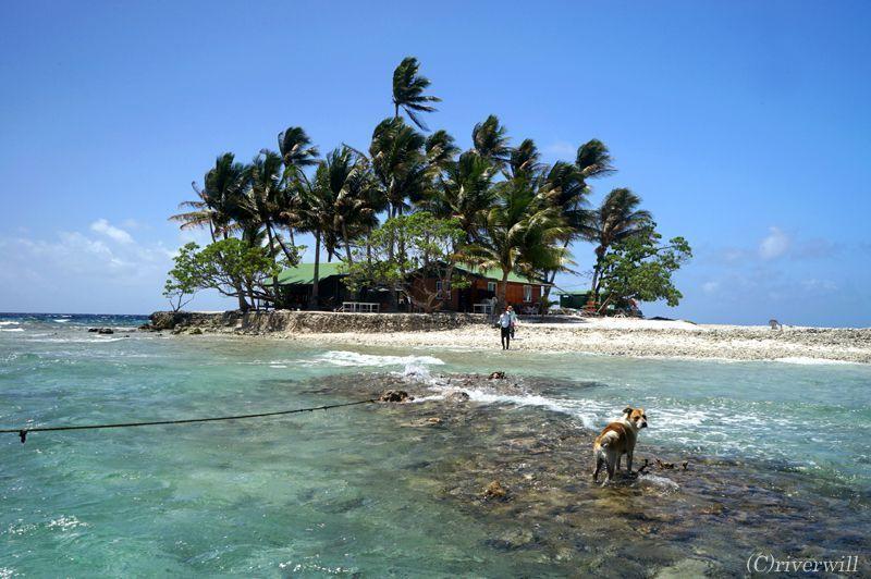 ジープ島でのマリンアクティビティ